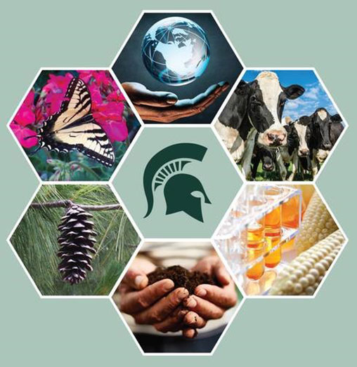 Ag Is Stem Home: 15 New MSU Scholarships To Be Awarded To Agricultural Or