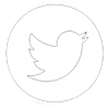 Twitter small button