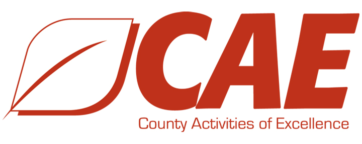 County Activities of Excellence